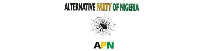 apn Logo  24x6.jpg